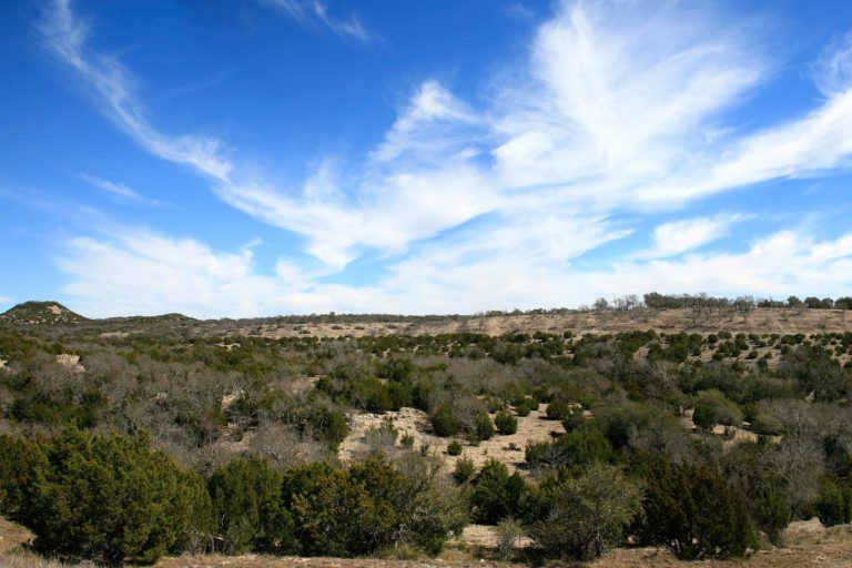 Texas hill country | Great Springs Project