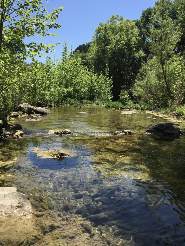 St. Edwards Park & Trail | Great Springs Project